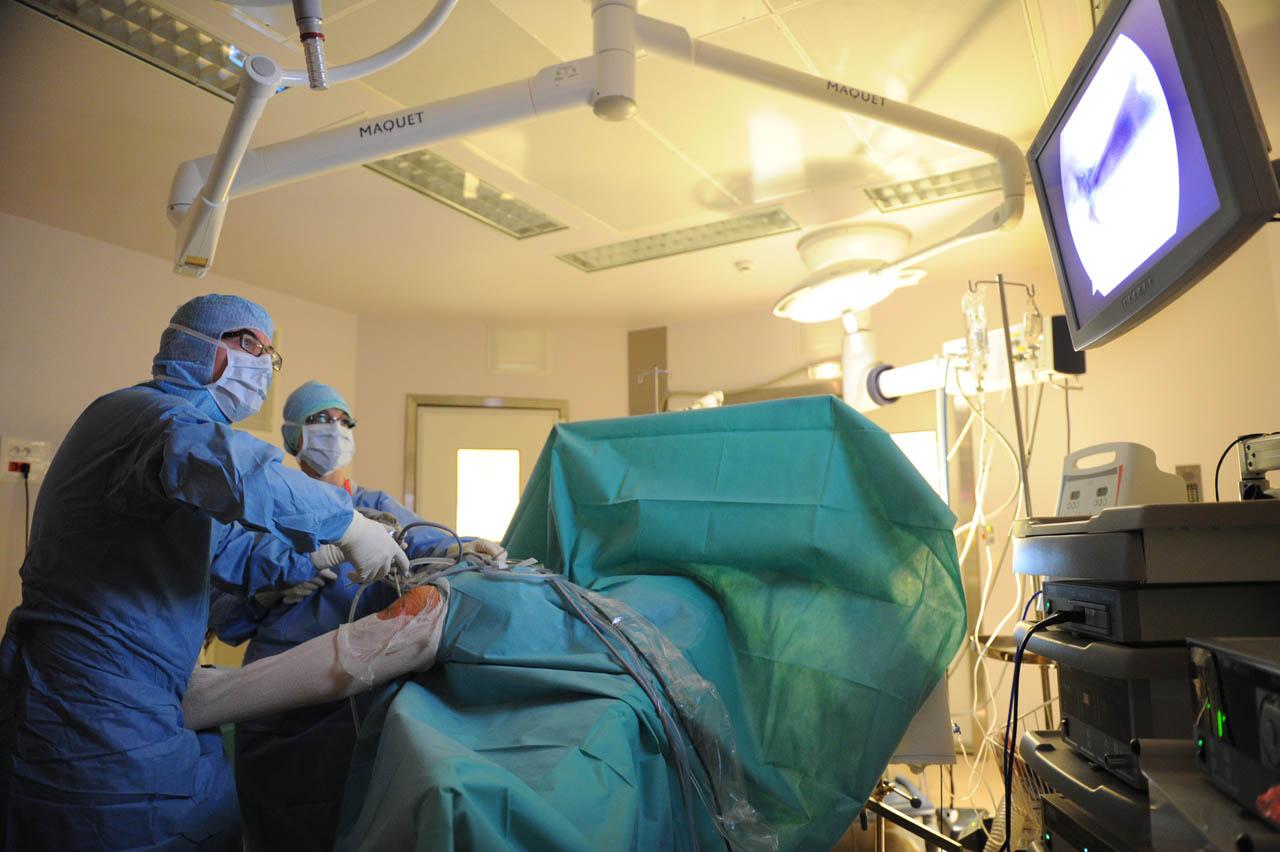 chirurgie orthop dique centre hospitalier du haut bugey. Black Bedroom Furniture Sets. Home Design Ideas
